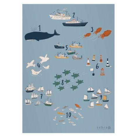Sebra Plakat Zahlen Seven Seas