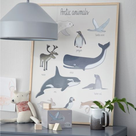 Sebra Poster Arctic Animals