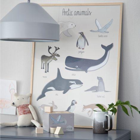 Sebra Poster Arctic Animals