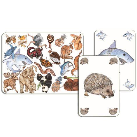 Djeco Kartenspiel Zanimatch