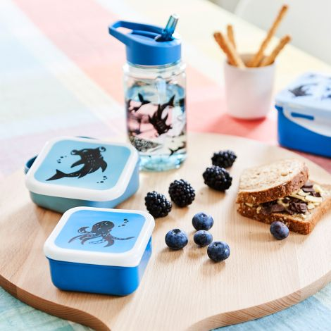 Petit Monkey Brotdose Lunchbox Meerestiere