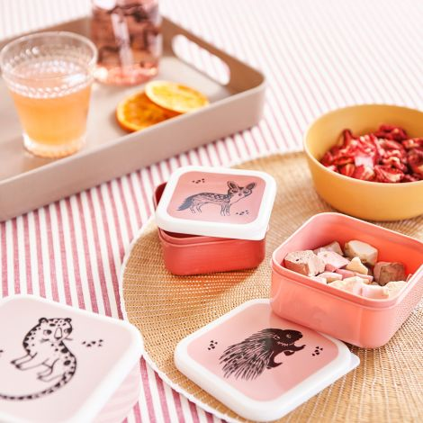 Petit Monkey Brotdose Lunchbox Tiere 3er-Set