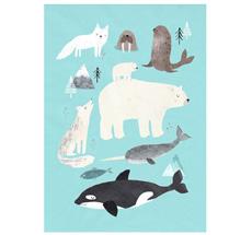 Petit Monkey Poster Polartiere